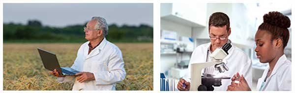 Agriculture Scientists Testing
